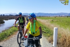 Tuatara-Tours-Happy-Cycling